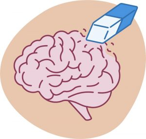 Image of brain to represent brain fog and memory loss