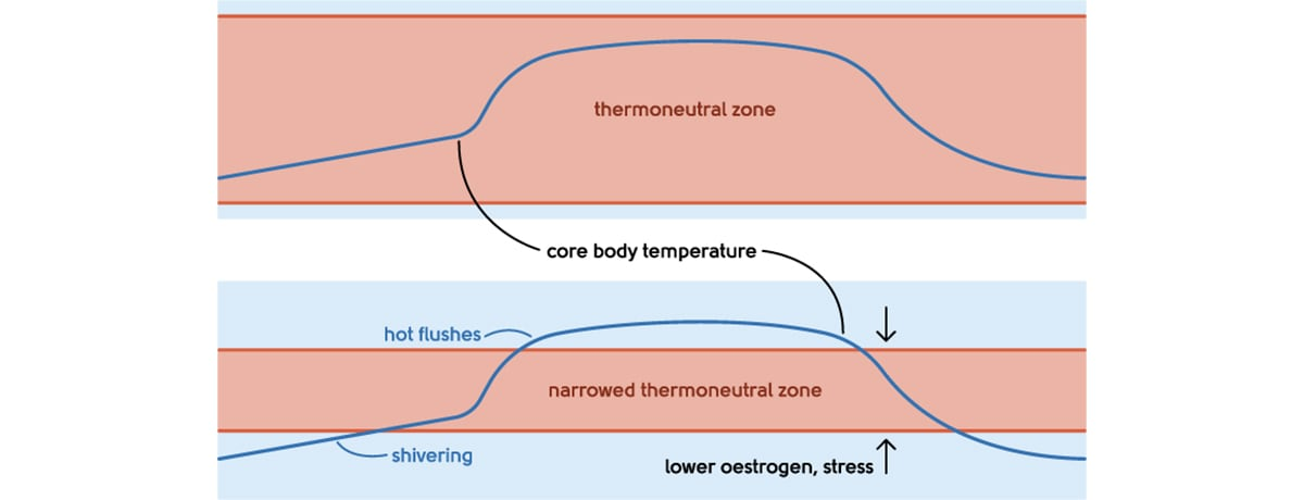Hot Flushes - Thermoneutral zone