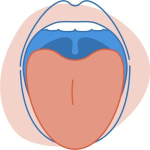 Menopause mouth